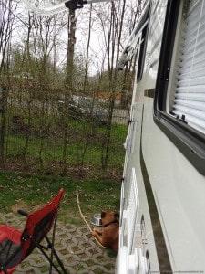 Duitsland - Gangelt - 29-03-2014 tot en met 31-03-2014 - 049