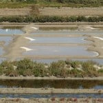 Frankrijk-Normandie-CharenteMaritime-van 15-09-2012 tot en met 23-09-2012-059