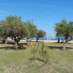 Frankrijk - Azurenkust - 25-05-2014 tot en met 08-06-2014 - 321