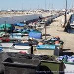 Frankrijk - Camargue - Le Cap d'Agde - 03-04-2015 tot en met 13-04-2015 - 025